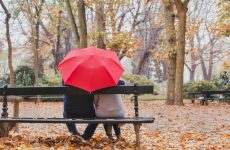 How to care for an umbrella: cleaning, washing, drying